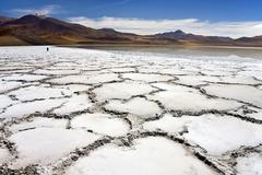 Tuyajto Lagoon and Salt Flats - Atacama Desert - Chile - stock photo