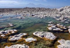 Chaxa Lagoon - Atacama Salt Flats - Chile Stock Photos