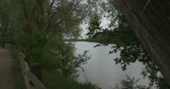 Evening on The River, Pond, Green Trees And Bushes, Water, Lake Stock Footage