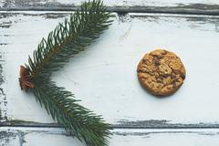 Biscuit and conifer Stock Photos