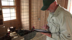 Chicken farmer using ipad in a chicken coop - stock footage