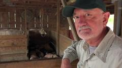 Pig farmer Stock Footage