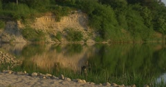 Pond, River, Lake Beach, Rippling Water, Trees`Reflection, High Sandy Bank Stock Footage