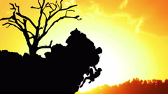 3687 Rock Climber Silhouette at Sunset with Tree Animation, 4K Stock Footage