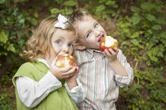 Adorable Brother and Sister Children Eating Big Red Apples Outside. - stock photo