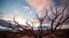 Time lapse in Capitol Reef at Sunset Stock Footage