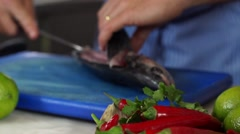Food, Preparing horse mackerel to grill Stock Footage