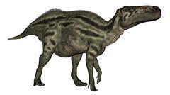 Shantungosaurus dinosaur - 3D render - stock illustration