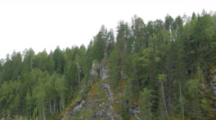Pines on the rocks, the river Serga, Urals, Russia. 4K Stock Footage