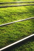 Stock Photo of tram railways in city grass