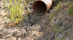 parched drainage channel with drain pipe, weather is very dry,zoom out - stock footage