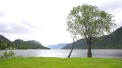 Lakefront Teletskoe Stock Footage