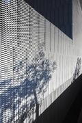 Plants casting shadow on textured wall of modern building - stock photo