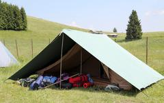 One tent of a campsite of the boy scouts in summer - stock photo