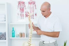 Doctor holding an anatomical spine - stock photo