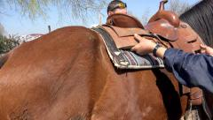 Rider putting brown saddle on brown horse for riding manifestation Stock Footage