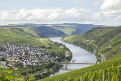 River Mosel and vineyards Stock Photos