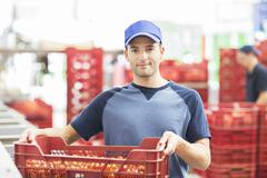 Portrait of confident worker holding crate of tomatoes in food processing plant - stock photo