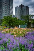 Gardens and buildings at Gateway Center Park in downtown Pittsburgh, Pennsylv - stock photo