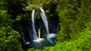 Stock Video Footage of Burney Falls In Green Forest