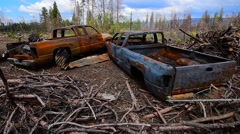 Vehicles Burned After A Major Forest Fire In California Stock Footage