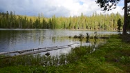 Stock Video Footage of Scenic Of A Lake and Forest On A Cloudy Day