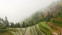 Terraced Rice Field in the Fog Stock Footage