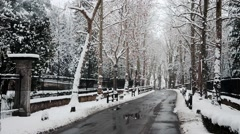 Snow Road Stock Footage