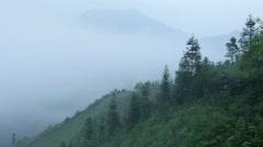 Spring mountain fog Stock Footage