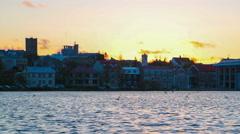 Midnight Sun, Arctic tern Kria bird flock flying feeding Reykjavik Iceland 4k Stock Footage