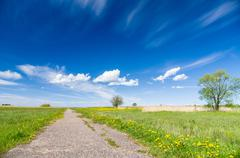 Natural blooming meadow vanishing footpath and blue sky - stock photo
