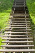 Wooden plank vanishing ladder in summer park Stock Photos