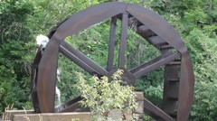 Old Grist Mill Wheel Stock Footage