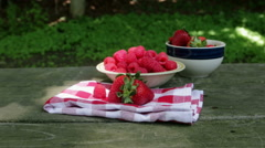 moving to raspberries - stock footage