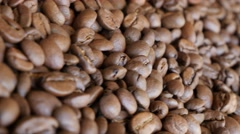 Arabica type coffee beans on table slow dolly 4K 2160p UltraHD footage - Doll - stock footage