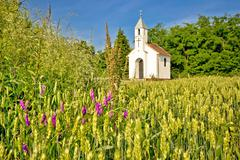 Catholic chapel in rural agricultural landscape - stock photo