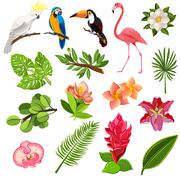 Tropical birds and plants pictograms set Stock Illustration