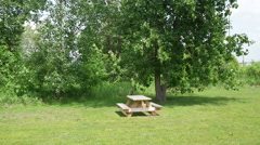 Glidecam shot camera approaching picnic table next to tree - stock footage