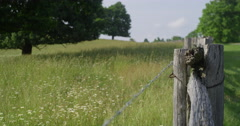 Fence With A View Stock Footage