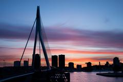 City of Rotterdam Skyline Silhouette - stock photo