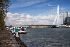 Erasmusbrug in Rotterdam - stock photo