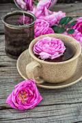 Tea rose Stock Photos