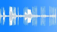 Bat Sounds - sound effect