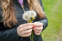 girl  holding a white dandelions - stock photo
