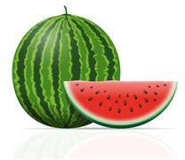 watermelon ripe juicy vector illustration - stock illustration