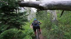 Mountain biker rides under tree Stock Footage
