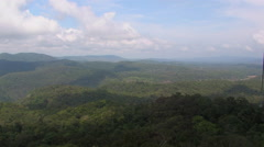 Australian Rainforest near Cairns, Australia - stock footage
