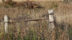 COUNTRY FENCELINE GRASS PRAIRIE WEEDS Stock Footage