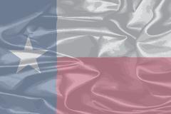 Texas Silk Flag Piirros