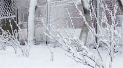 Winter Spring at the cottage in the village Stock Footage